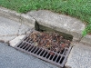 rose-hill-storm-drain