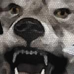 Cry-Wolf-Header2