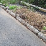 Rose hill curb long