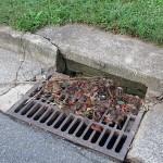 rose hill storm drain