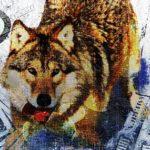 Wolf-Heade-proc