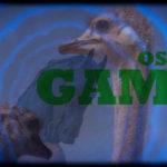 Ostrich-games-proc-630